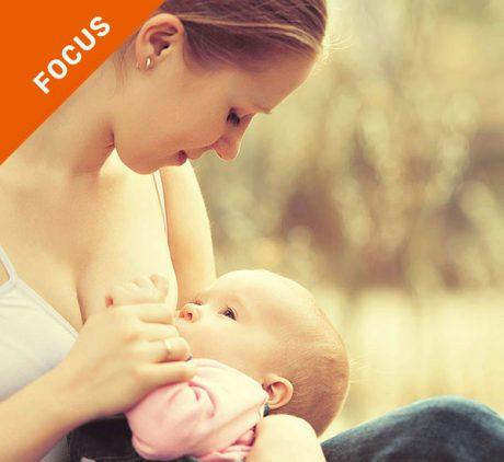 focus_allattamento